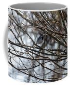 White Wagtail Coffee Mug