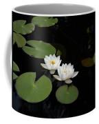 White Water-lily 4 Coffee Mug