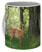 Whitetail Deer Fawn Coffee Mug