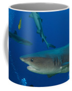 Whitetip Reef Shark, Papua New Guinea Coffee Mug by Steve Jones