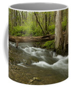 Whitewater River Spring 18 Coffee Mug