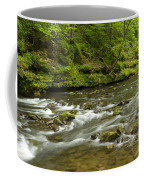 Whitewater River Spring 8 A Coffee Mug