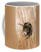 Who Goes There Coffee Mug