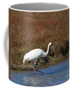 Whooping Crane Coffee Mug