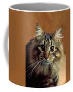Wide-eyed Maine Coon Cat Coffee Mug