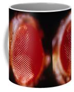 Wild & Vermillion Eyes Of Drosophila Coffee Mug