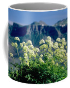 Wild Angelica Coffee Mug by James Steinberg and Photo Researchers