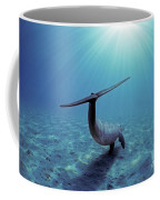 Wild Bottlenose Dolphin Coffee Mug