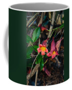 Wild Crossvine Coffee Mug