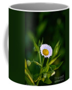 Wild Daisy Coffee Mug