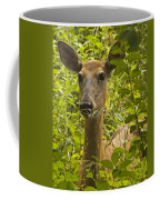 Wild Doe Coffee Mug
