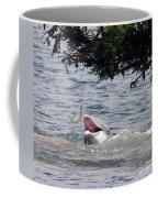 Wild Dolphin Feeding Coffee Mug