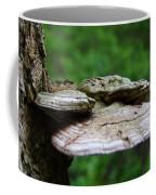Wild Fungi Coffee Mug