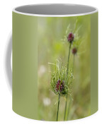 Wild Garlic - Allium Vineale Coffee Mug
