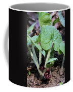 Wild Ginger Coffee Mug