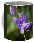 Wild Lavender Orchid Coffee Mug