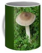 Wild Mushroom Coffee Mug