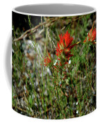 Wild Paint Brush Coffee Mug