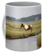 Wild Pony In The Marsh On Assateague Island Md Coffee Mug