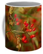 Wild Red Berry Reflections Coffee Mug