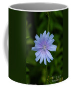 Wild Star Coffee Mug