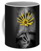 Wild Swamp Daisy Coffee Mug