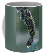Wildflower Dew Covered Coffee Mug