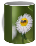 Wildflower Named Robin's Plantain Coffee Mug