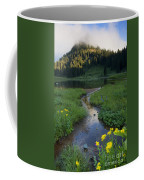 Wildflower Stream Coffee Mug