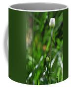 Wildflower1 Coffee Mug
