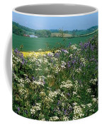 Wildflowers, Near Seaforde, Co Down Coffee Mug