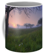 Wildflowers On A Foggy Pasture Coffee Mug