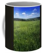 Wildflowers On A Landscape, Connemara Coffee Mug