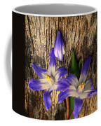 Wildflowers On Wood Coffee Mug