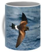 Wilson's Storm-petrel Coffee Mug