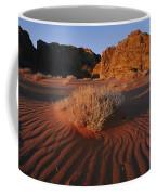Wind Makes Waves In The Sand Coffee Mug