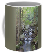 Winding Stream Coffee Mug