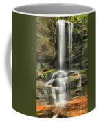 Window Falls Cascade Coffee Mug