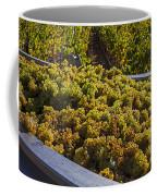 Wine Harvest Coffee Mug by Garry Gay