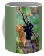 Wine In Time Coffee Mug