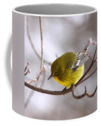 Wingbars Of White Coffee Mug