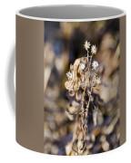 Winter Blossom Fairy Coffee Mug