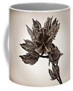 Winter Dormant Rose Of Sharon - S Coffee Mug