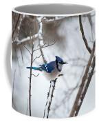 Winter Jay Coffee Mug