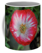Winter Poppy Coffee Mug
