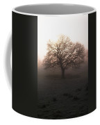 Winter Tree On A Frosty Morning, County Coffee Mug