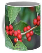 Winterberry Coffee Mug