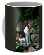 Wirehair Fox Terrier Coffee Mug