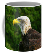 Wisconsin Bald Eagle Coffee Mug