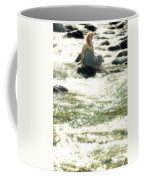Woman Admist A Torrent Coffee Mug